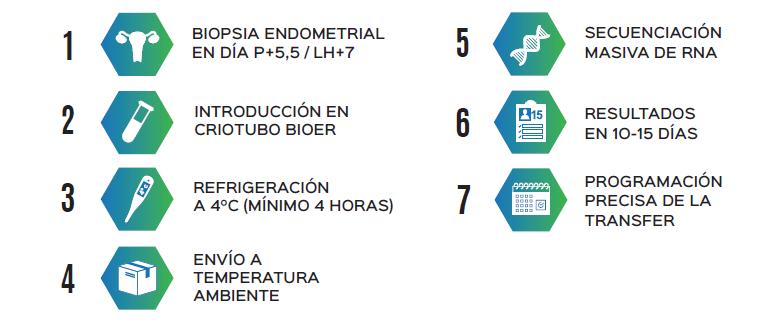 BioER - TEST DE RECEPTIVIDAD ENDOMETRIAL